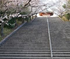 平和公園 階段